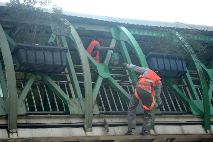 Labourer busy in coloring on the metro bridge at Mazang Chungi
