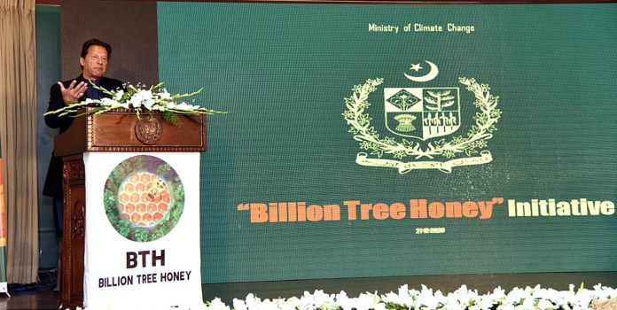 PM for enhanced forestation, promoting production of olives, avocado, other fruits, vegetables