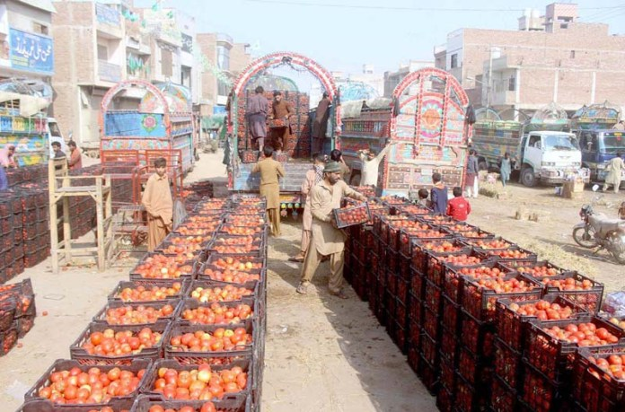 Labourer busy in unloading tomato from delivery truck at vegetable market