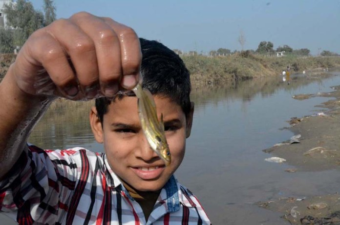 A youngster showing fish after catching from Canal