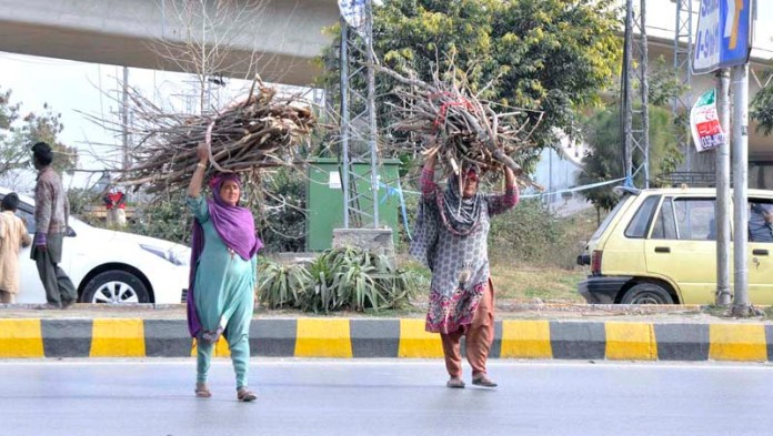 Gypsy women carrying fire wood on their head collected for domestic use crossing a main road in the federal capital