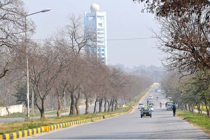 A beautiful view of leafless trees at center path of road in Federal Capital