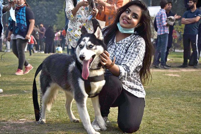 People along with their pets participating in dog show during FCI International Championship organized by PHA to mark with Jashn-e-Baharan at Jilani Park