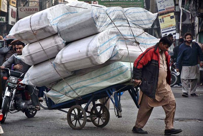 Daily wager engaged in carrying goods by a pushcart at circular road to earn for livelihood in the Provincial Capital