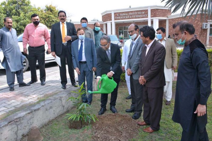 Indonesian Ambassador Adam M. Tugio planting a sapling during his visit at University of Agriculture