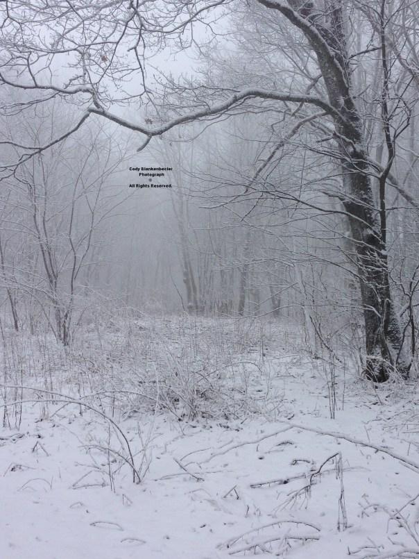 "Around 3"" Of Wet Snow - Eagle Knob of High Knob Massif"