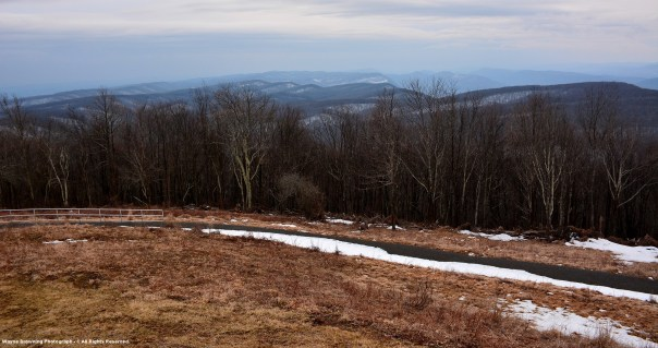 Bare Ground On SW Side of Wind Blasted High Knob Meadow - 7:12 PM March 9, 2015