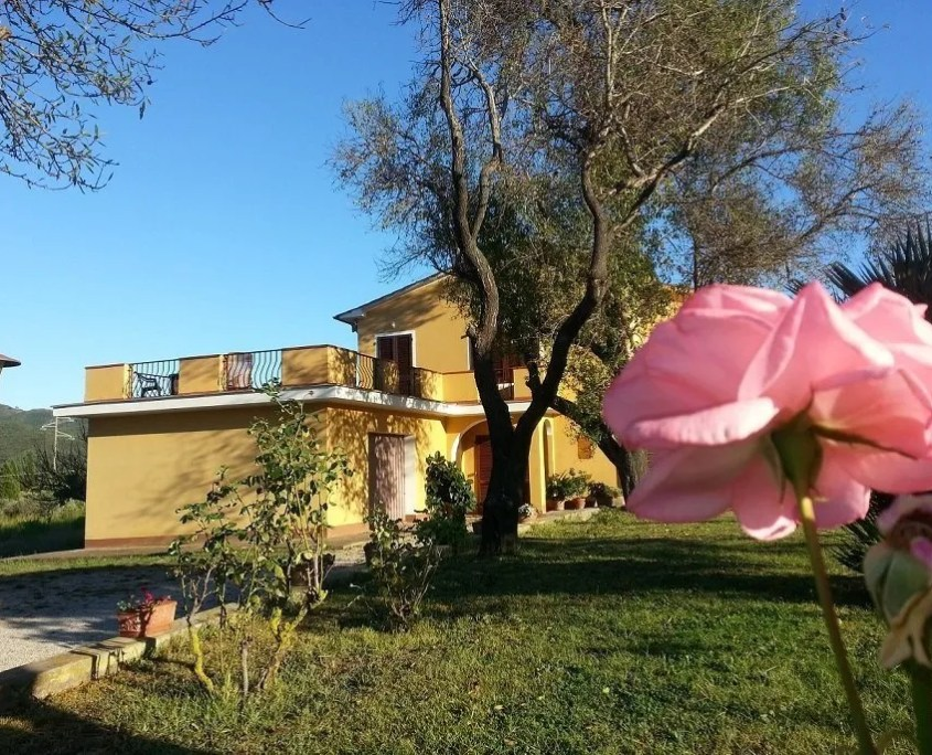 Villa for rent on the island of Elba