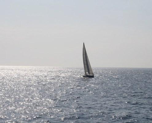 Elba Barca a vela