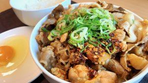 【テイクアウト】2,000kcal超え吉野家「スタミナ超特盛丼」食べてみた! 牛・豚・鶏の魅惑のコンボで大満足だ!!