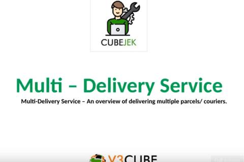 multi delivery service