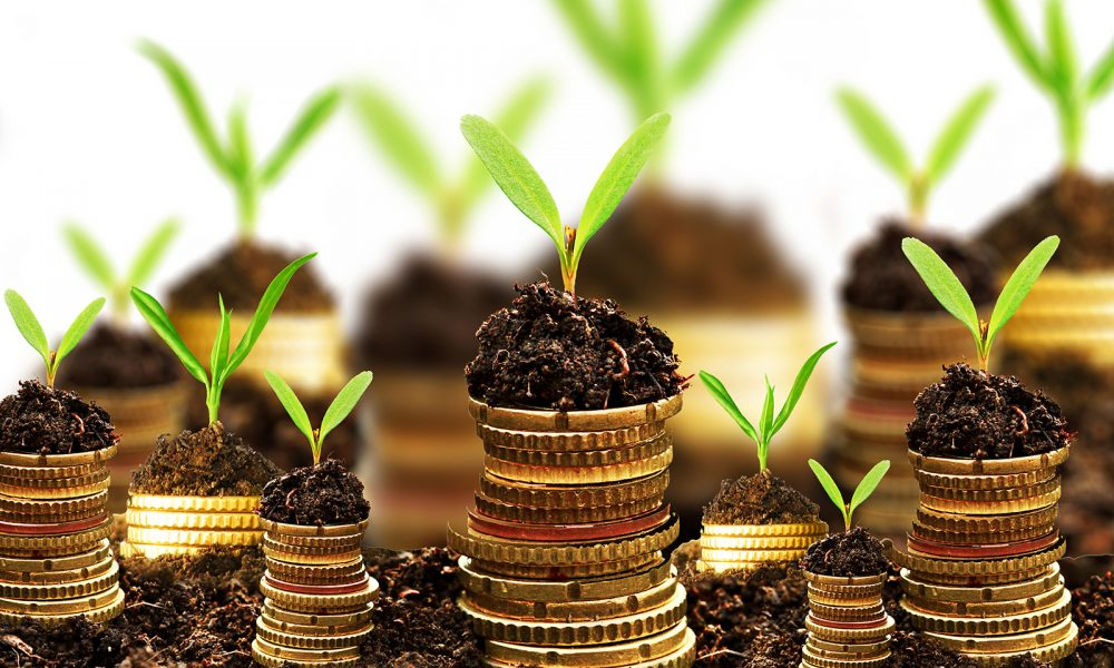 8 Tiny Investments that can Yield a Large ROI