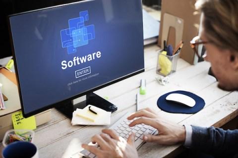 Software Entrepreneurs