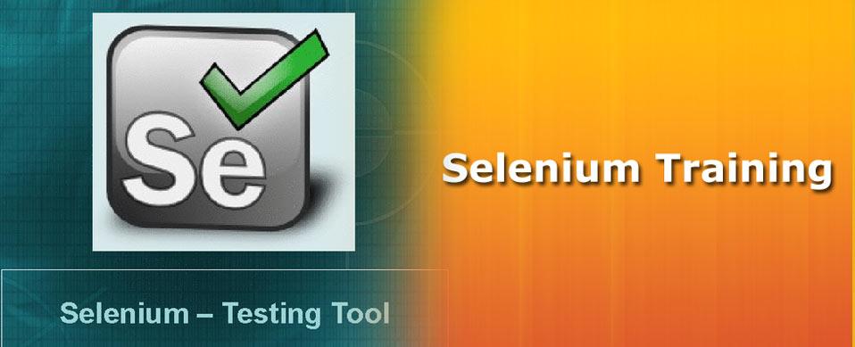 Take Advantage Of Selenium Training
