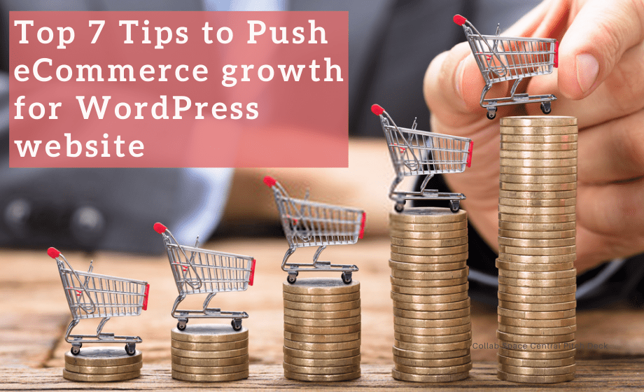 Top 7 Tips to Push eCommerce growth for WordPress website