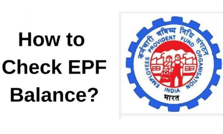 How To Check Your EPF Balance and Status Easily?
