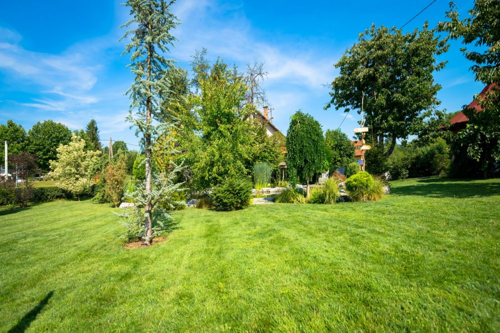 How to Choose the Right Artificial Grass for Your House