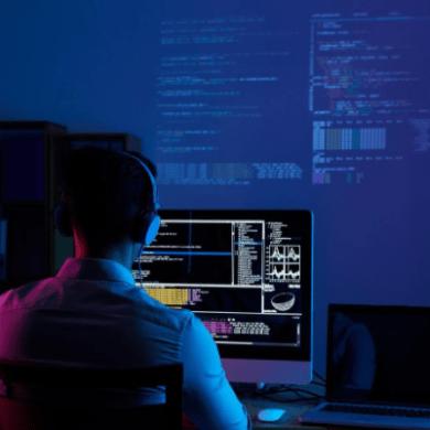 rookie programmers