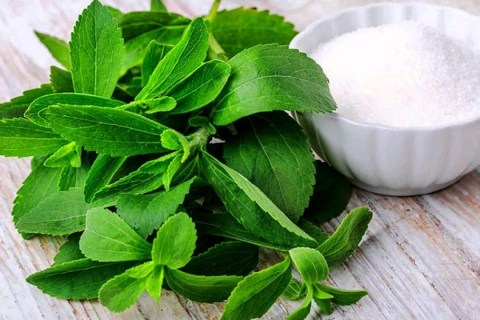 stevia sweetener products