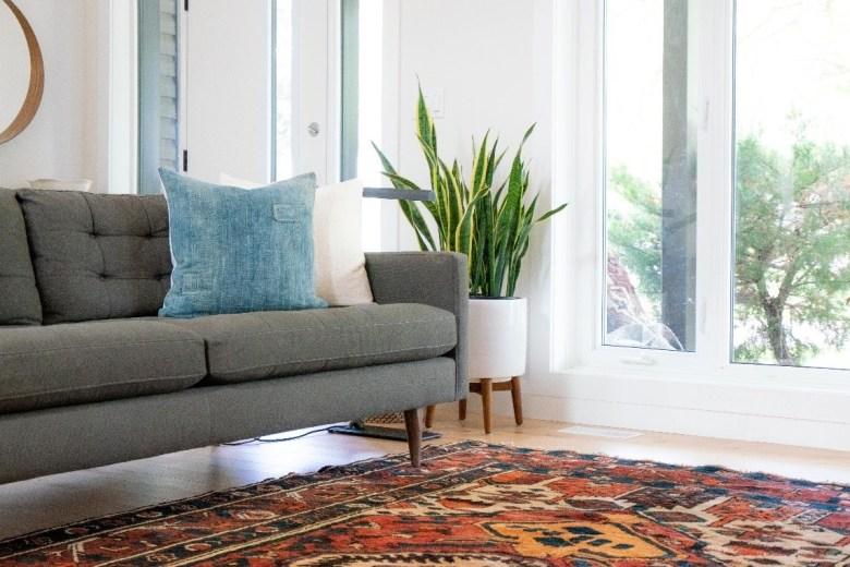 carpet odor removal