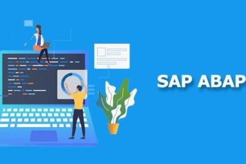 SAP ABAP programs