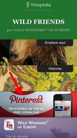 Fotopedia Wild Friends y Pinterest