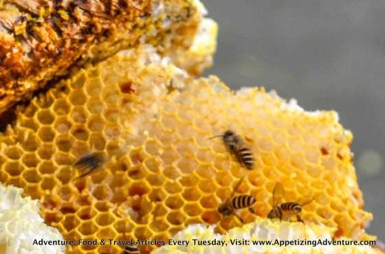 honeycomb baler -003