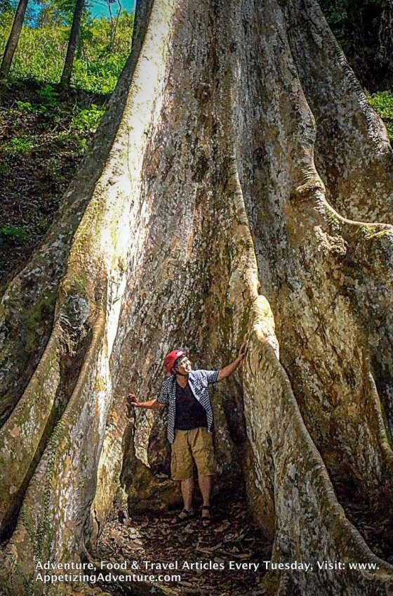 Mapawa Nature Park-003
