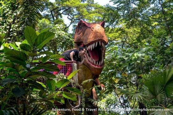 Clark Dinosaurs Island -034