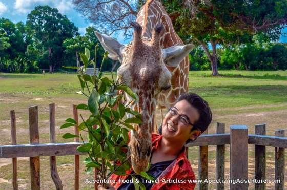 Calauit Safari Busuanga Coron Palawan -034
