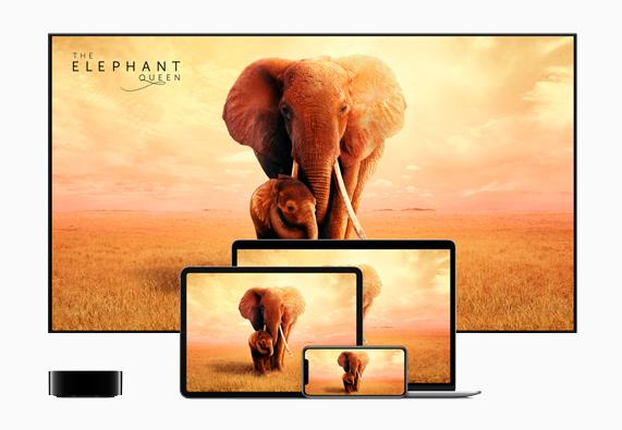 Apple TV+のサブスクリプションに登録すると、iPhone、iPad、Apple TV、iPod touch、Macで提供されるApple TVアプリケーションに加え、一部のSamsung製スマートTV、Roku、Amazon Fire TVなどの他社製デバイス*を通じて、Apple Original作品を視聴できます。