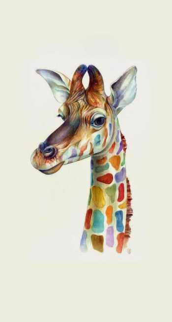 friendly-giraffe-colorful-iphone-6-plus-hd-wallpaper