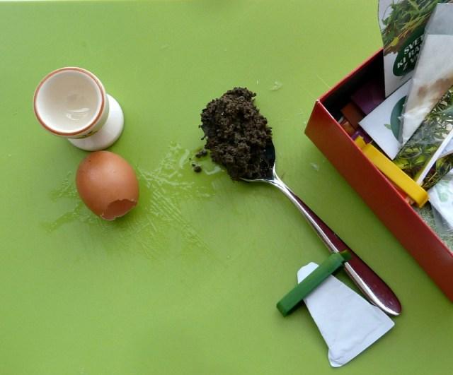 eggshells as seed planters