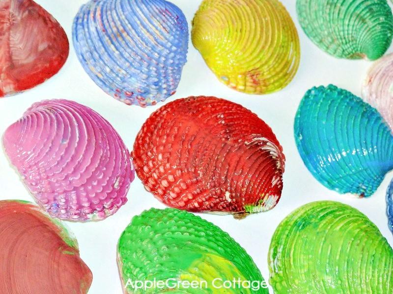 how to paint seashells