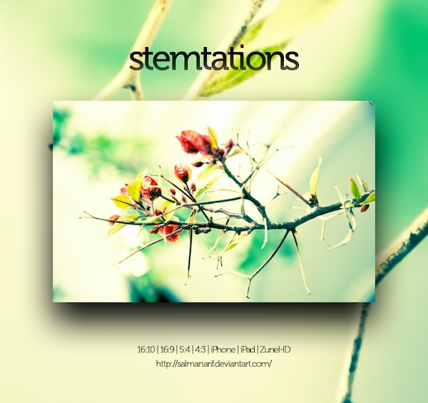 Stemtations