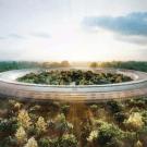 Apple-Campus 6
