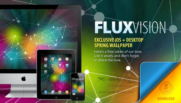 FLUX Vision