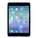 ipad mini icon retina
