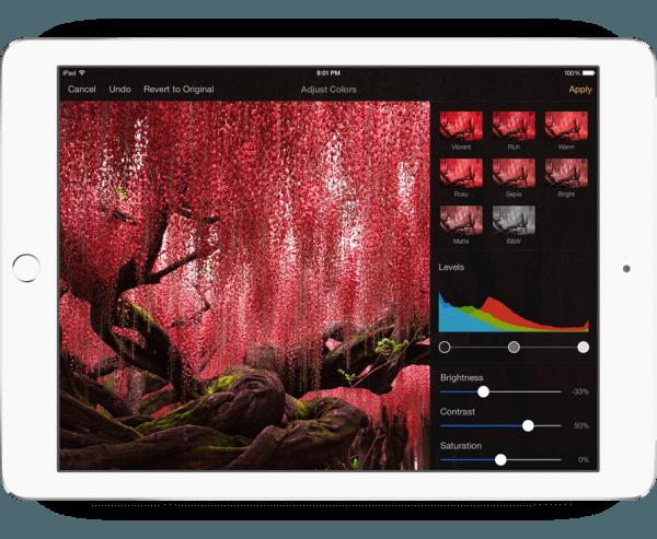 pixelmator ipad fotobewerker
