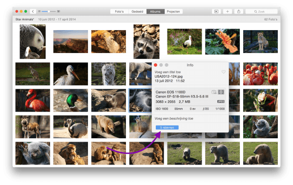 fotopreview2
