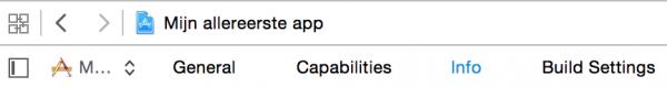 Selecteer de Info-tab