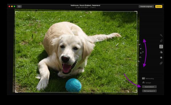 Foto rechtzetten in Foto's voor OS X