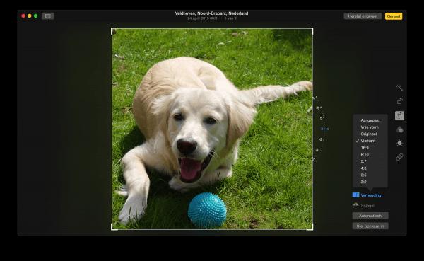 Foto bijsnijden en spiegelen in Foto's voor OS X