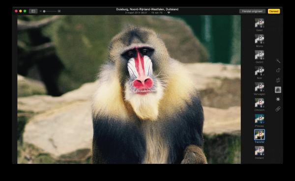 filters toepassen in de Foto's app OS X
