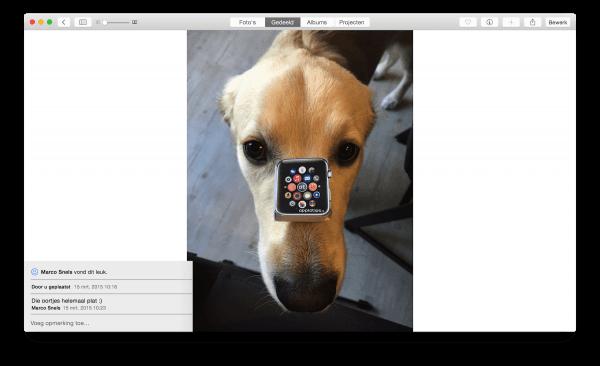 iCloud-fotodelen reacties