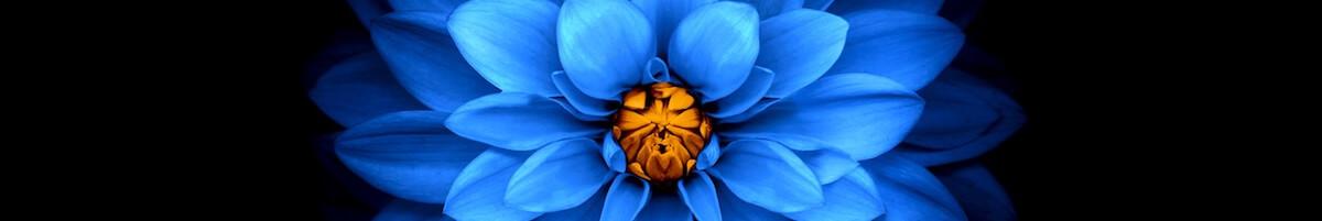 Flower Mod
