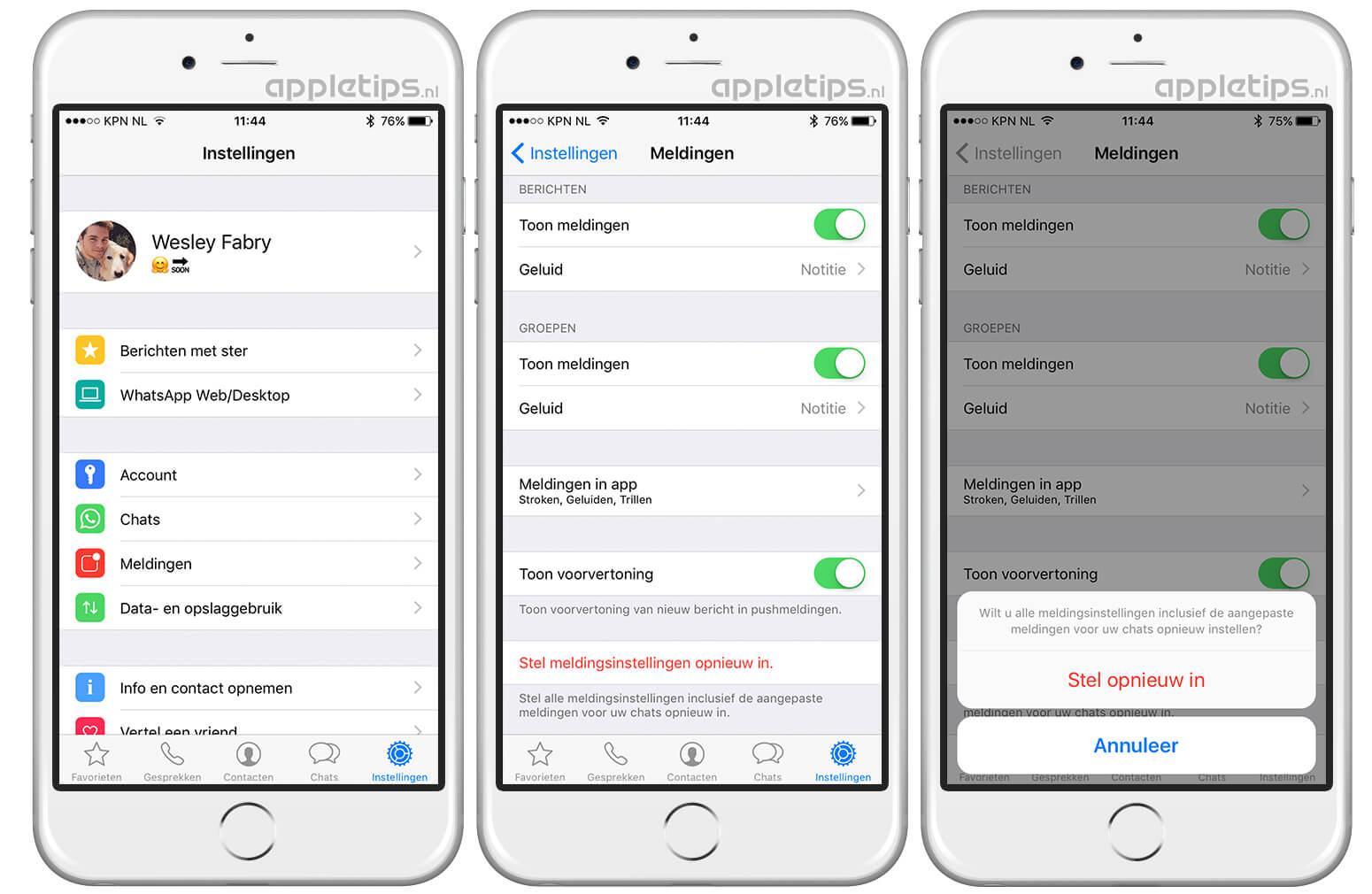 whatsapp berichten op nieuwe telefoon zetten iphone