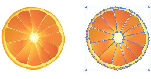 オレンジ みかん イラレ/ベクトルデータ