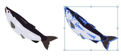 鮭 シャケ