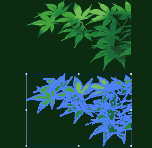 緑色のもみじの葉
